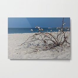 Subtle Things Metal Print