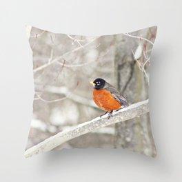 Bird Art, Robin Photograph, Robin Picture, Woodland Decor, Home Decor, Forest, White, Nature Photogr Throw Pillow