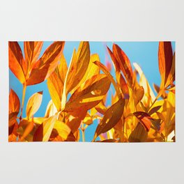 Autumn colors leaves against the blue sky #decor #society6 Rug