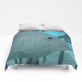 The White Guy Comforters