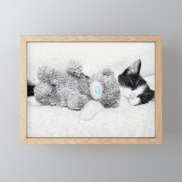 Kitten and teddy Framed Mini Art Print