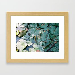 Pond in Macao Framed Art Print