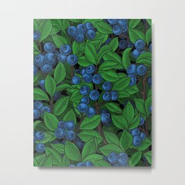 Blueberry Metal Print
