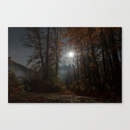 Spook Canvas Print