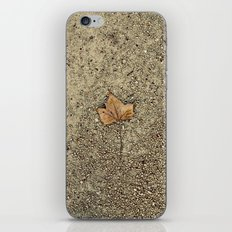 Forgotten Autumn  iPhone & iPod Skin