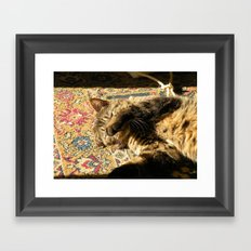 Why you wake me up? Framed Art Print