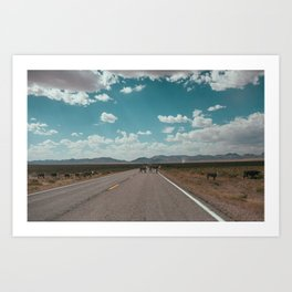 cows on the open road Art Print