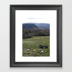 Sheepscape Framed Art Print