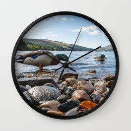 Cute ducks at Loch Tay in Kenmore in Scotland Wall Clock