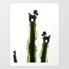 Poodle cacti Art Print