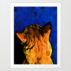 Back of a Cat's Head with some Blue Art Print
