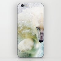 polar bear iPhone & iPod Skins featuring Polar Bear by Pati Designs