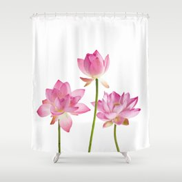 Lotos Waterlilies Flowes pink Shower Curtain