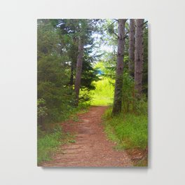 Happy Trails Metal Print