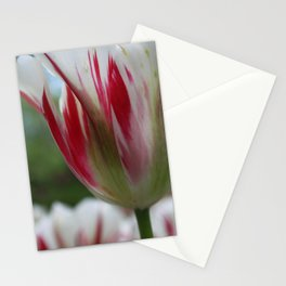 Painted Petals Stationery Cards