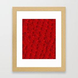 Scarlet Eft Framed Art Print