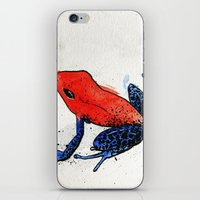 frog iPhone & iPod Skins featuring Frog by Jacob Haynes