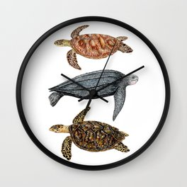Green, leatherback and hawksbill sea turtles Wall Clock