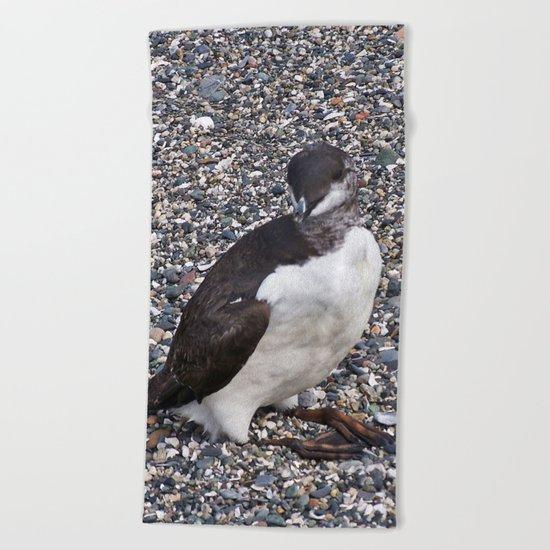Razorbill Walking on the Beach Beach Towel
