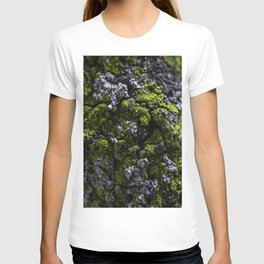Barnacle Woodlands T-shirt