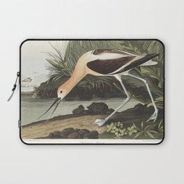 American Avocet from Birds of America (1827) by John James Audubon etched by William Home Lizars Laptop Sleeve