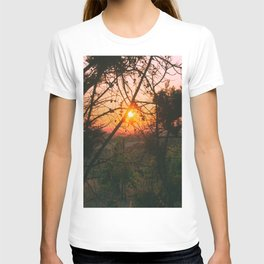 Sun Captured by Trees T-shirt
