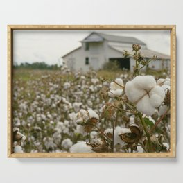 Close-up of a cotton boll with cotton field and barn in the background Serving Tray