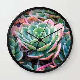 Succulent Garden Vibrant Pastel Wall Clock
