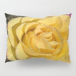 Valentine's Day Roses 32 Pillow Sham