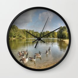 Geese on the Lake HDR Wall Clock