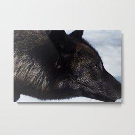 Wolves I Metal Print