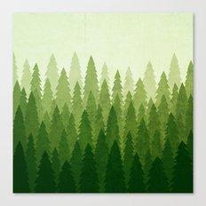 C1.3 Pine Gradient Canvas Print