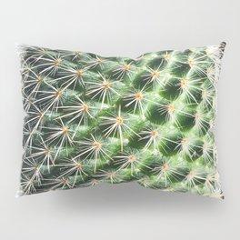 closeup green cactus texture with morning sunlight Pillow Sham
