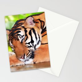 Sleeping Tiger Stationery Cards
