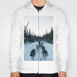 SNOW - HUSKIES - SLED - FOREST Hoody