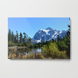Mount Shuksan between the Trees Metal Print