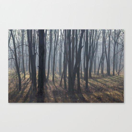 Fog Autumn forest Canvas Print