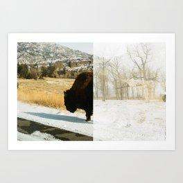 Your Friendly Neighborhood Bison Art Print