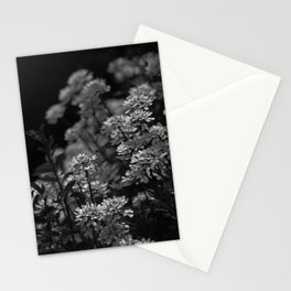 Edelweiss by Moonlight Stationery Cards