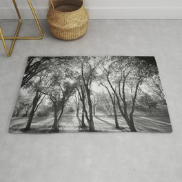 Into The Shadows Rug