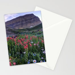 Mt. Timpanogos Wildflowers At Sunset Stationery Cards