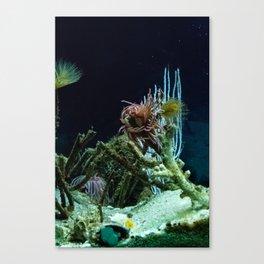 Sea Bed #1 Canvas Print