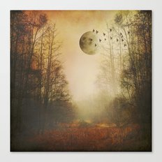 mOOn meaDow Canvas Print