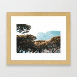 Hazey Trees Framed Art Print