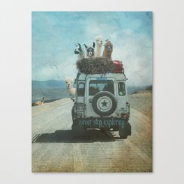 ALPACA WANDERLUST II SUMMER EDITION Canvas Print