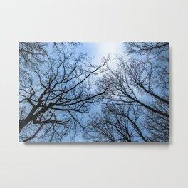 Eerie naked trees tops Metal Print