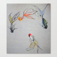 Goldfish Pond (close up #8) Canvas Print