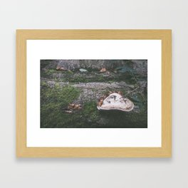 Forest (III) Framed Art Print