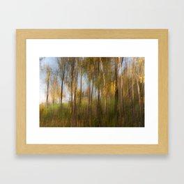 Movement in Nature IX Framed Art Print