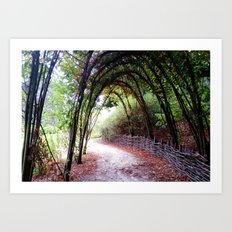Secret Road Art Print
